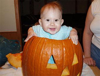 Maria pumpkin